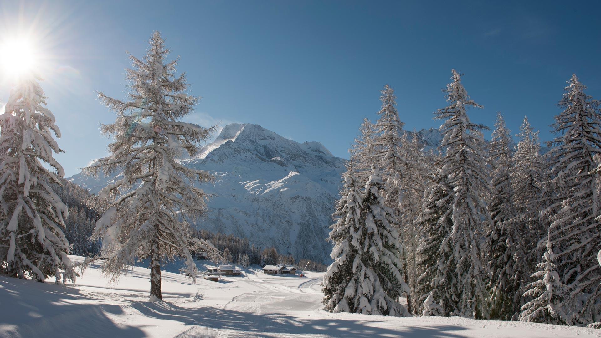 ski slopes Plan Bois, Sainte Foy