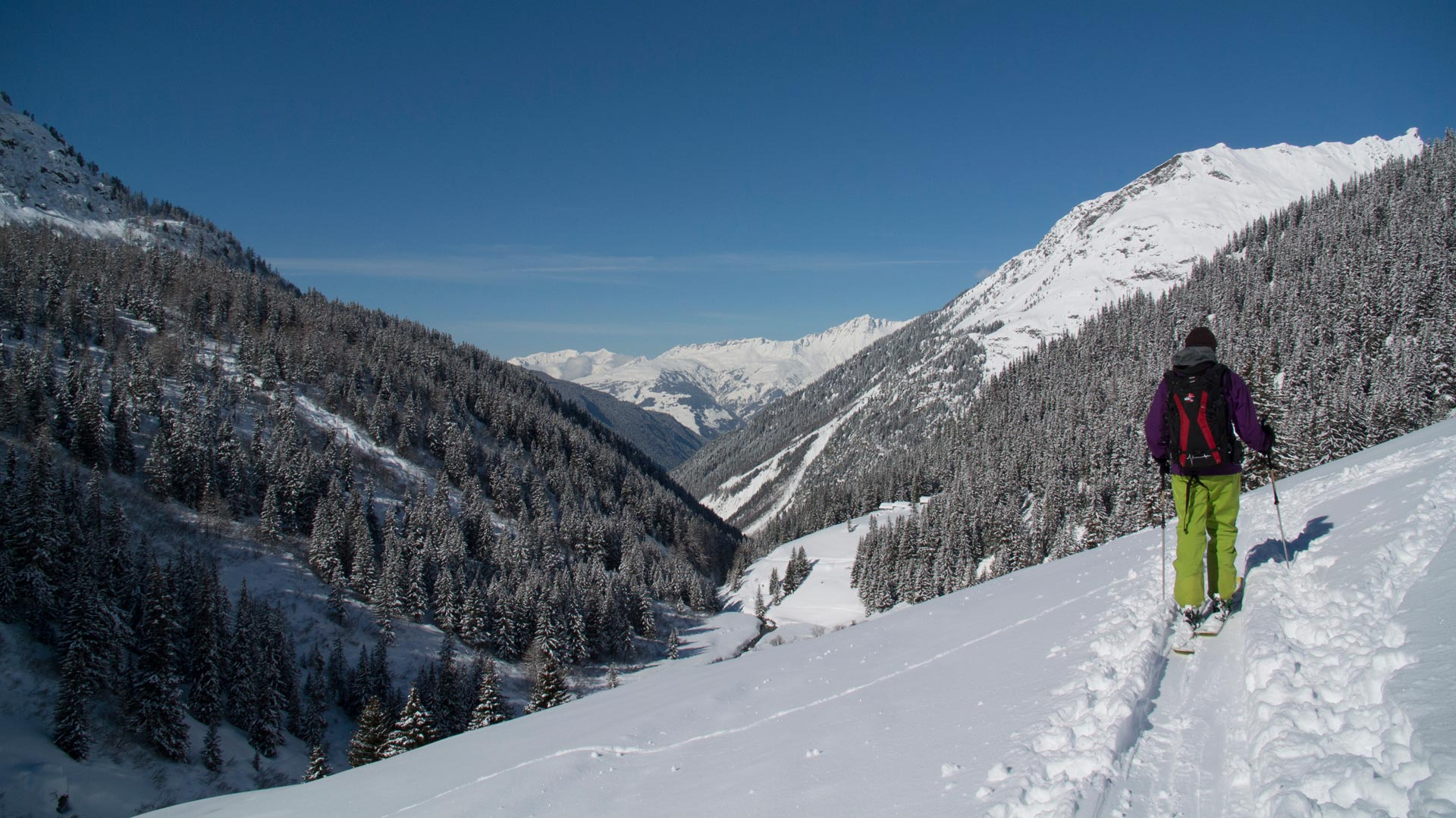 Off-piste skiing in Sainte Foy